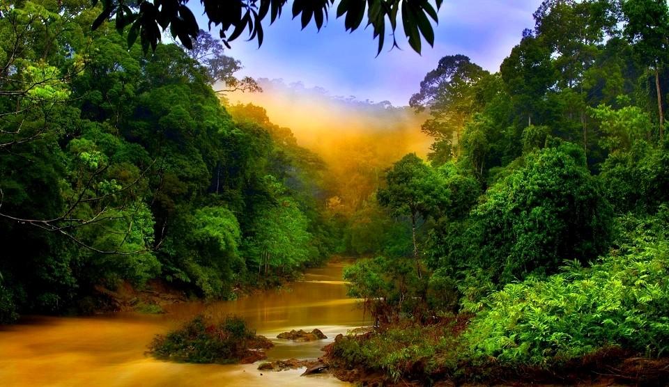 Borneo Rundreisen