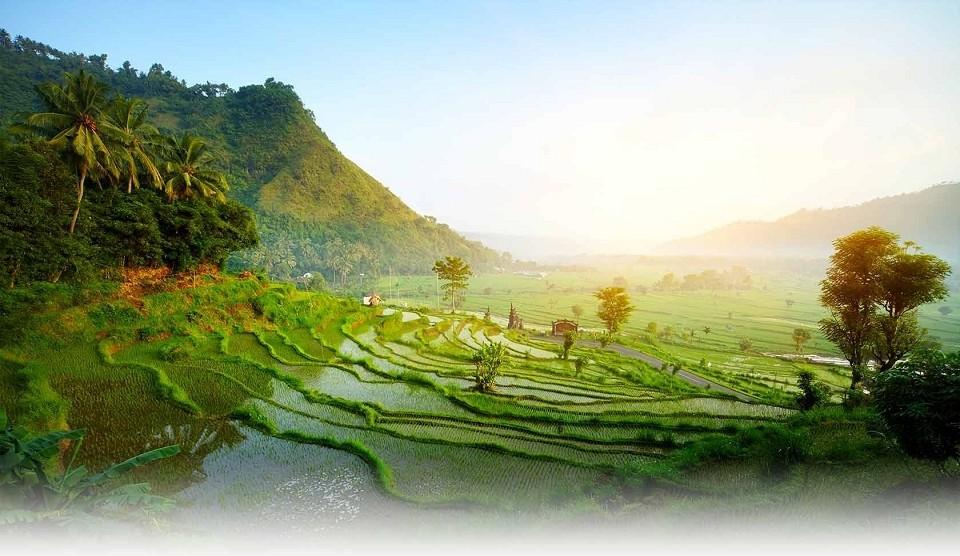 Bali Reise