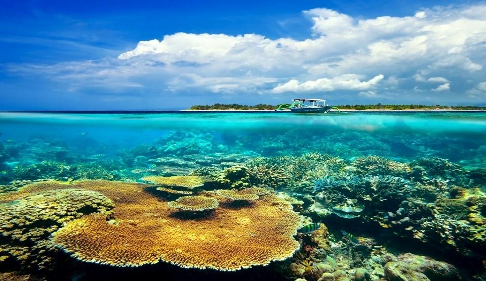 Lombok Schnorcheln