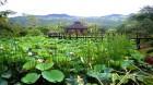 Inle Princess - Inle Lake