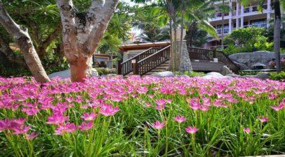 Centara Grand - Phuket
