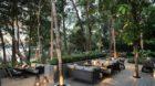 Banyan Tree - Krabi